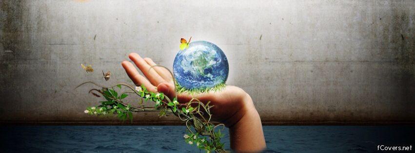 Describing Ecosystems – Part B
